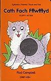 Cath Fach Fflwfflyd: Fluffy Kitten (Welsh Edition)