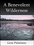 img - for A Benevolent Wilderness book / textbook / text book