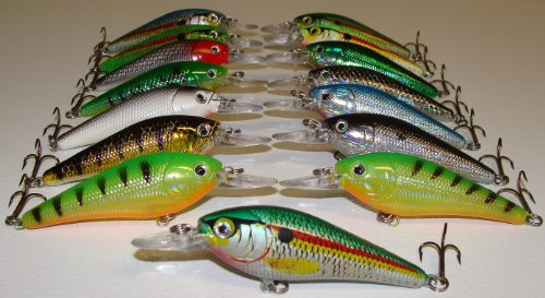 Best 15 Shallow Diving Plugs (Set of 15 Lures) - Fishing Lure Set S15  Review