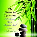 The Meditation Experience: Listening to Your Psychic Soul, Vol. 1  by Judith Pennington Narrated by Judith Pennington