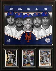 MLB New York Mets 2013 Team Plaque