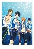 TVアニメーション『Free!-Eternal Summer-』公式ガイドブック