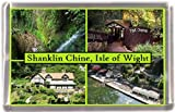 Shanklin chine isle of wight Gift Souvenir Fridge Magnet