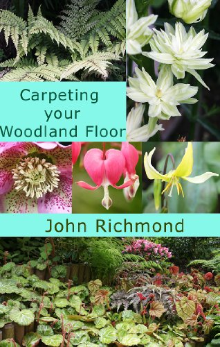Carpeting your Woodland Floor