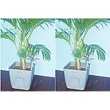 "Self Watering Square Neck AVANT Smartpot 9.3"" From Virgin Plastic In Dove Grey-Set Of Two"
