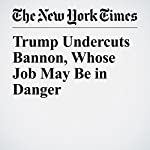 Trump Undercuts Bannon, Whose Job May Be in Danger | Jeremy W. Peters,Maggie Haberman