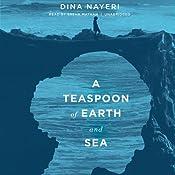 A Teaspoon of Earth and Sea: A Novel | [Dina Nayeri]