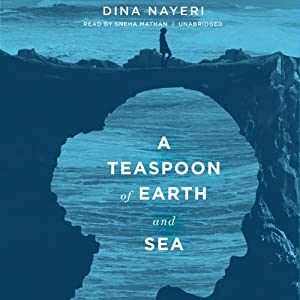 A Teaspoon of Earth and Sea: A Novel | [Dina Nayeri]