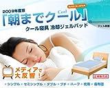 オーシン 低反発冷却ジェルパッド 朝までクール 2009年度版 ハーフ+枕セット