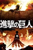 Attack On Titan Japan Anime Nice Silk Fabric Cloth Wall Poster Print (36x24inch)