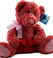 Applause By Russ Two Toned Red Pink Teddy Bear with Gift Card Holder by Russ
