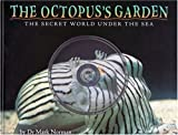 The Octopus's Garden: The Secret World Under the Sea