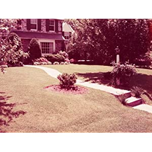Suburban Home With Front Lawn Photographic Poster Print by H. Armstrong Roberts, 30x40