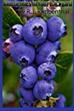 Blueberries in Your Backyard: How to Grow America's Hottest Antioxidant Fruit for Food, Health, and Extra Money