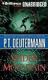 Spider Mountain (Cam Richter Series)