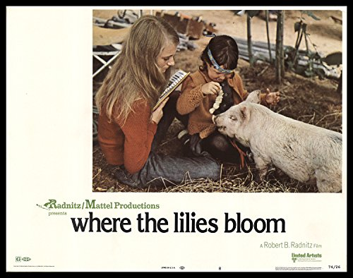 where-the-lilies-bloom-1974-original-movie-poster-drama-family-romance-dimensions-11-x-14
