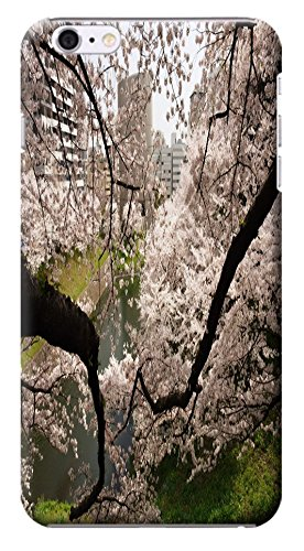 Fantastic Faye Cell Phone Cases For Iphone 6 No.7 The Beautiful Design With Japanese Cherry