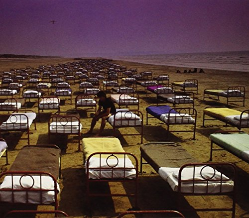 Pink Floyd - A Momentary Lapse Of Reason (LP) [Columbia, OC 40599] - Zortam Music