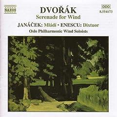 Serenade in D minor, Op. 44: IV. Allegro molto