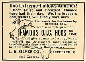 1906 Ad Famous OIC Hogs Breeders L B Silver Company Pig - Original Print Ad