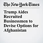 Trump Aides Recruited Businessmen to Devise Options for Afghanistan | Mark Landler,Eric Schmitt,Michael R. Gordon