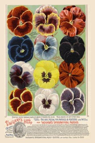 Canvas Print, Vaughan's Seed Store - Pansies - 12x18