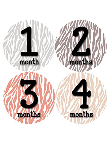 Months in Motion 350 Monthly Baby Stickers Baby Girl Months 1-12 Zebra Print