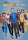 Big Bang Theory: The Complete Eighth Season [DVD] [Import]