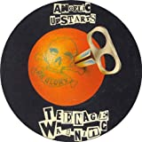 ANGELIC UPSTARTS TEENAGE WARNING TAX DISC HOLDER