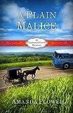 A Plain Malice: An Appleseed Creek Mystery (Appleseed Creek Mystery Series Book 4)