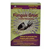Green it Nema-Globe Fungus Gnat Pest Control