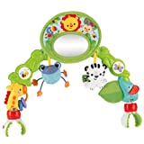 Fisher-Price Deluxe Stroller Toy
