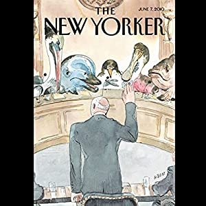 The New Yorker, June 7th, 2010 (John Lanchester, Larry Doyle, Jeffrey Eugenides) Periodical