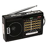 QFX R-39 AM/FM/SW 10 Band Radio with Flashlight and USB/TF Player
