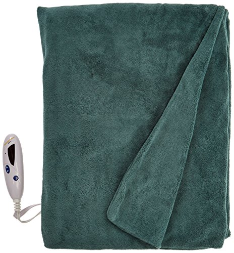 Biddeford 4460-9062119-601 Electric Heated MicroPlush Throw, 50-Inch by 62-Inch, Prague Green (Biddeford Heated Throws compare prices)
