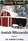 img - for Amish Blizzards: Volume Three: An Amish Cowboy book / textbook / text book