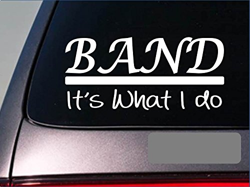 Band Sticker Decal *E305* Singing Mic Microphone Studio Bass Guitar Drum Music