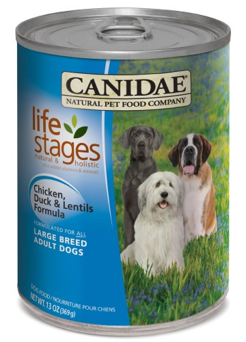 Dog Life Stages front-981920