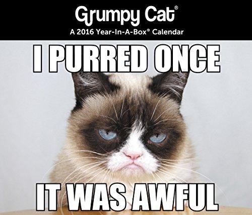 Grumpy Cat Year-In-A-Box Calendar (2016)