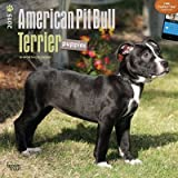 (12x12) American Pit Bull Terrier Puppies - 2015 Calendar