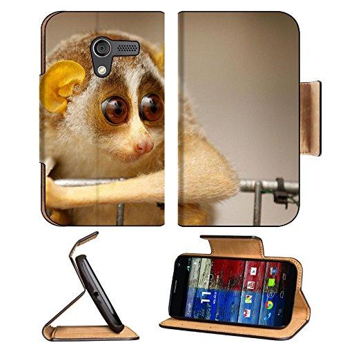 Baby Sunda Slow Loris Animal Motorola Moto X Flip Case Stand Magnetic Cover Open Ports Customized Made To Order Support Ready Premium Deluxe Pu Leather 5 7/16 Inch (138Mm) X 3 1/16 Inch (78Mm) X 9/16 Inch (14Mm) Luxlady Mobility Cover Professional Motox C front-781193