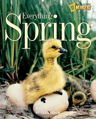 Everything Spring (Picture the Seasons) (Pictures Of Spring compare prices)