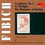 Cpo/Sejna Fibich/Symphony 1