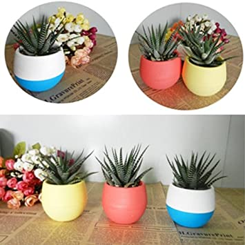 9 couleurs pp r sine r sine plastique plante verte pot de fleurs bricolage. Black Bedroom Furniture Sets. Home Design Ideas