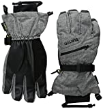 Burton Gore-Tex Gloves, Bog Heather, Large
