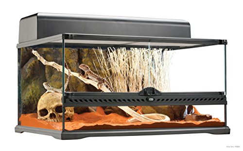 Exo Terra Short All Glass Terrarium, 24 by 18 by 12-Inch (Bearded Dragon Tank compare prices)
