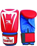 Rabro Ringtec Red Boxing Gloves