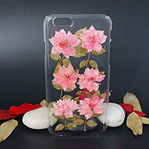 Beautiful Real Flowers Clear Slim Unique Design Phone Case for iPhone 6(14)