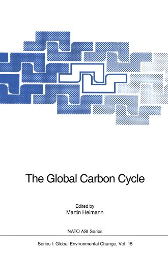 The Global Carbon Cycle (Nato ASI Subseries I:)