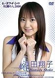 浜田翔子 2006 レースクイーンの女神たち [DVD]